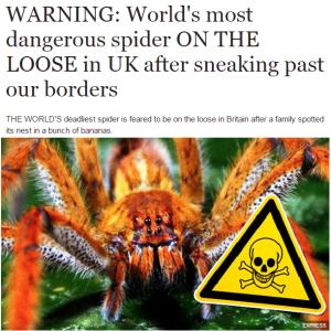 express spider headline