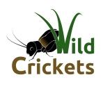 Logo_Cricket